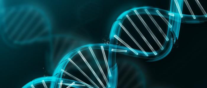 Determinados genes podem proteger a audiҫão | OtoSinus Otorrinolaringologia - Maceió - AL